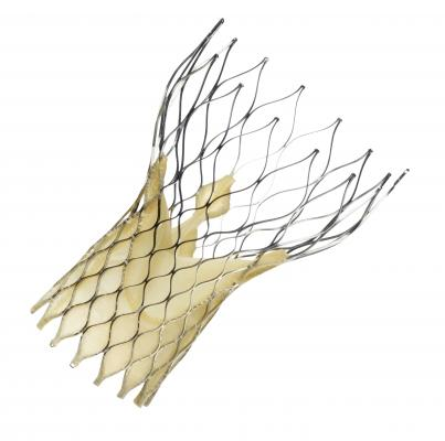 Medtronic, corevalve, edwards, litigation, TAVR, TAVI