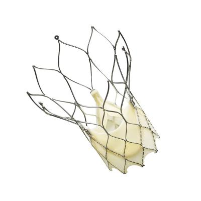St. Jude Medical Portico TAVR System U.S. Implants Clinical Study