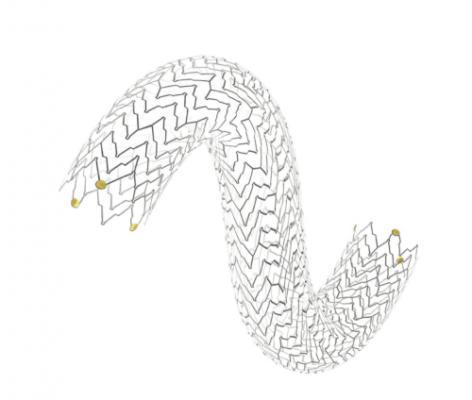 Terumo Corp. Arterial Remodeling Technologies Bioresorbable Coronary Stent