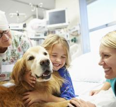 pediatric echocardiograms, cardiovascular ultrasound, therapy dog impact, animal-assisted therapy, Human Animal Bond Research Initiative, HABRI