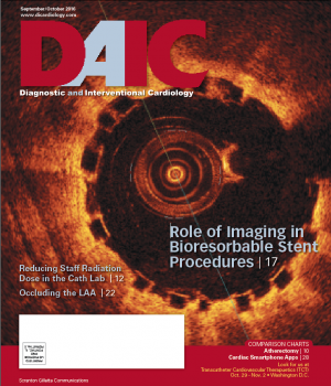 OCT imaging of a bioresorbable stent, DAIC magazine