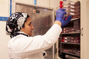 FDA MSC Consortium Stem Cell Research