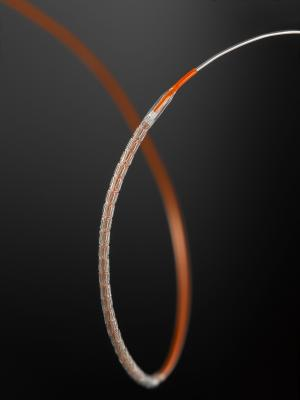 abbott Xience Xpedition stent