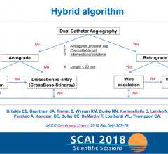 PROGRESS-CTO flow chart for the hybrid algorithm. #SCAI, #SCAI2018