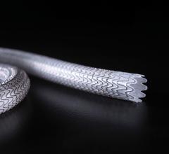 Gore Medical, Gore Viabahn Endoprosthesis, CE Mark, stent grafts